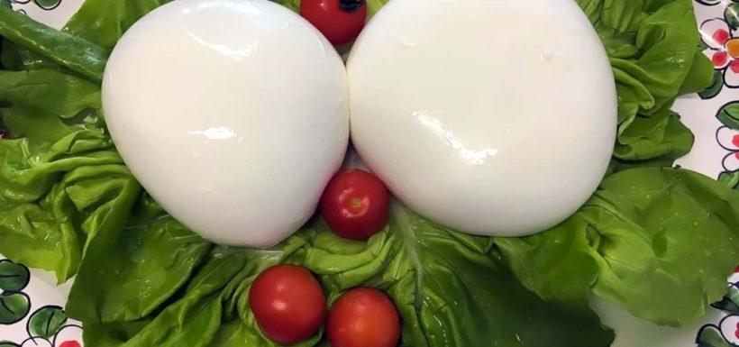 Mozzarella di Bufala Campana-dop